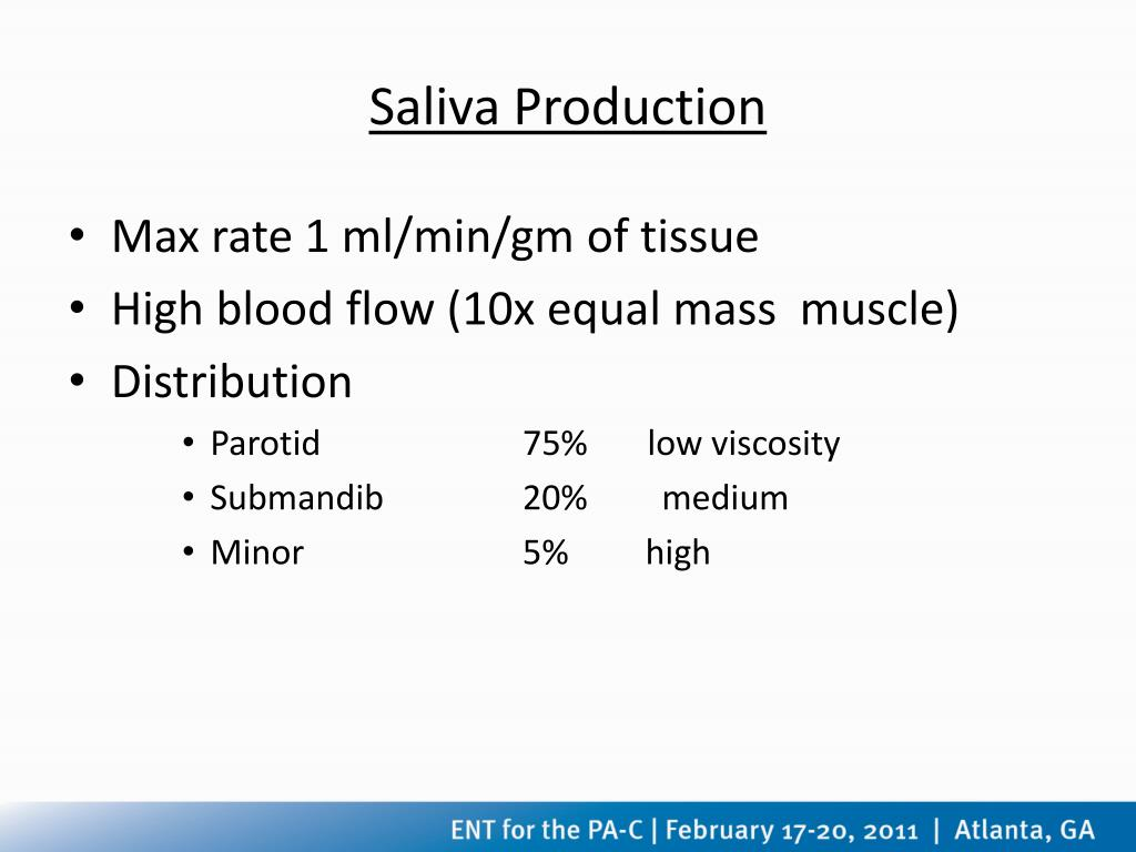 Saliva Production