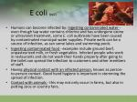 e coli pg2