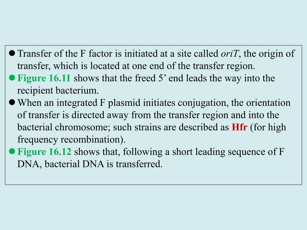 Transfer of the F factor is initiated at a site called