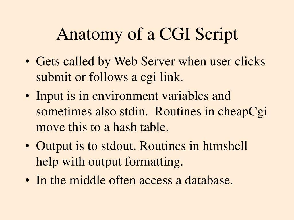 Anatomy of a CGI Script