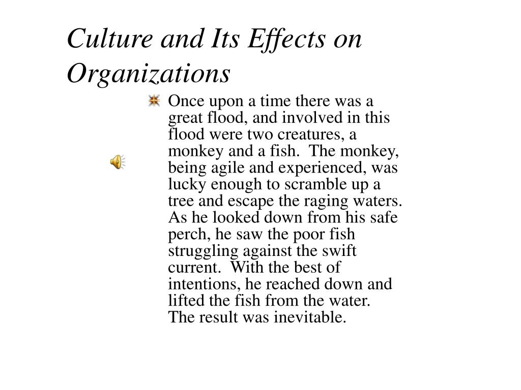Culture and Its Effects on Organizations