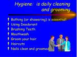 hygiene is daily cleaning and grooming