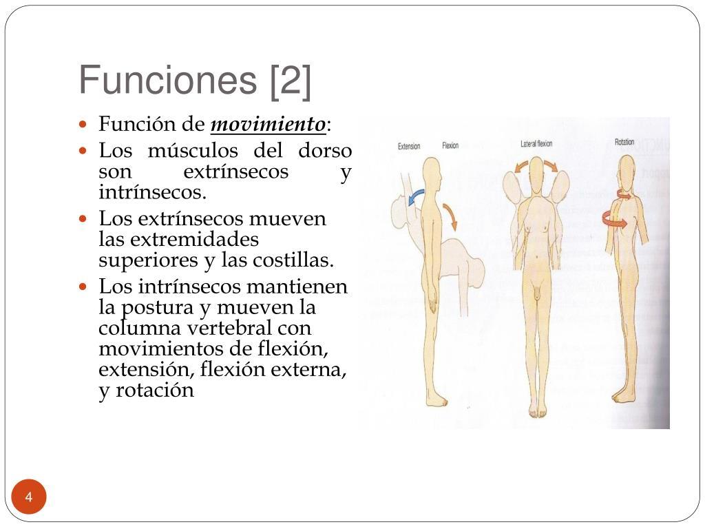 Funciones [2]