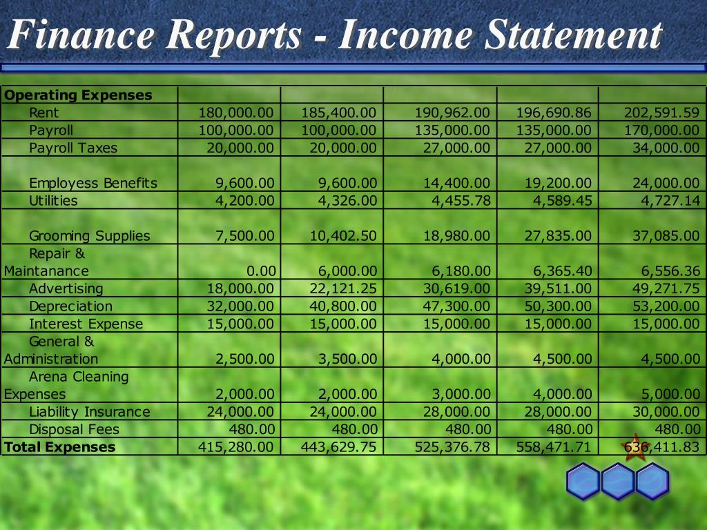 Finance Reports - Income Statement