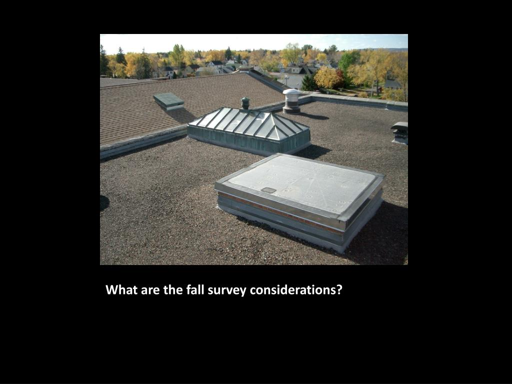 What are the fall survey considerations?