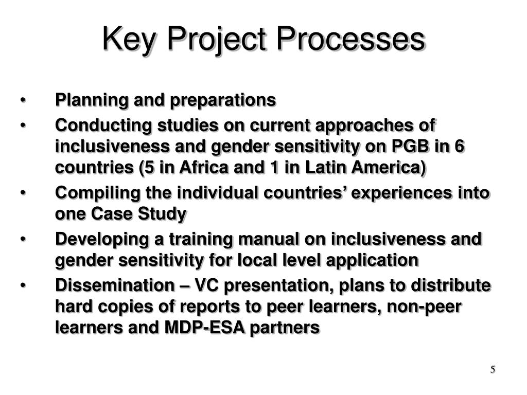 Key Project Processes