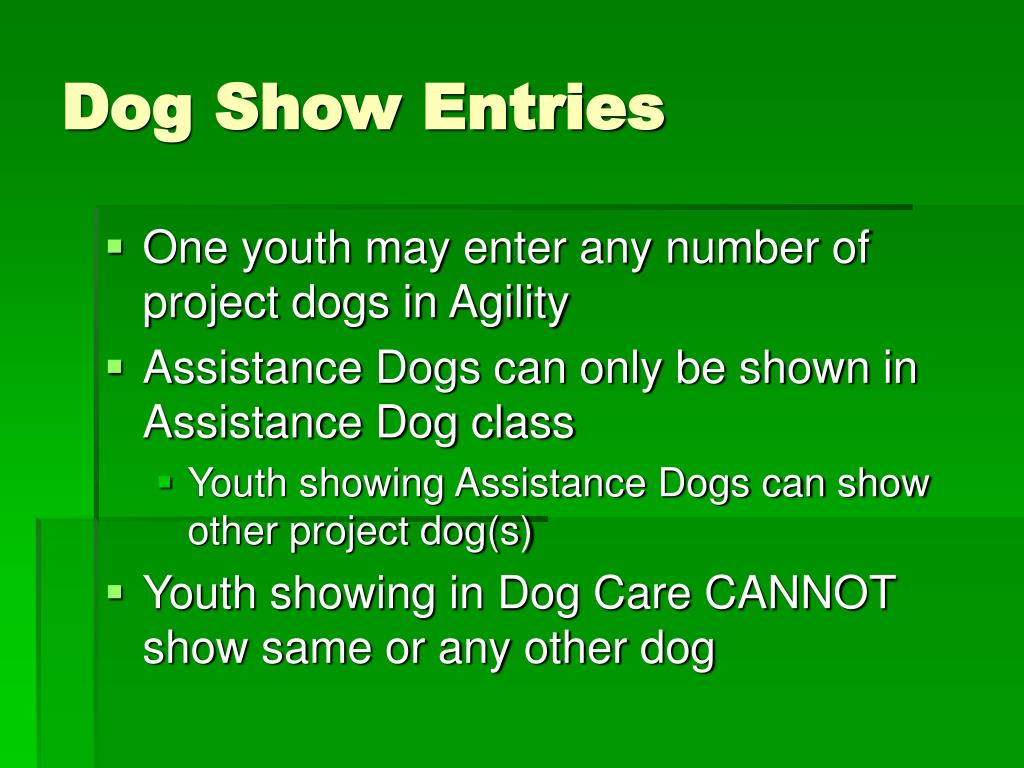 Dog Show Entries