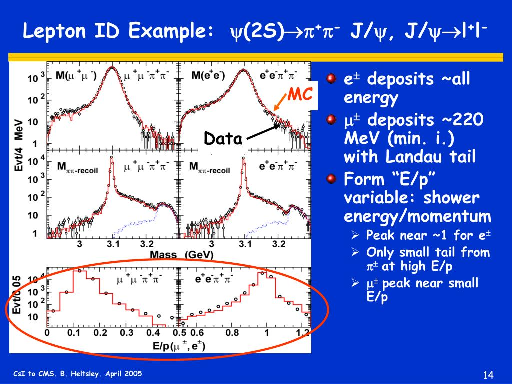 Lepton ID Example: