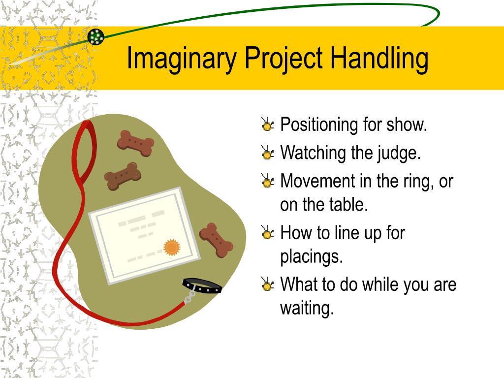 Imaginary Project Handling