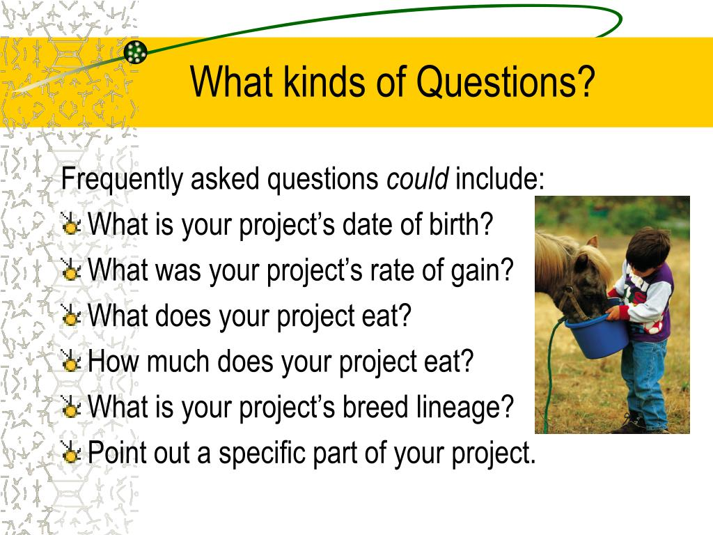 What kinds of Questions?