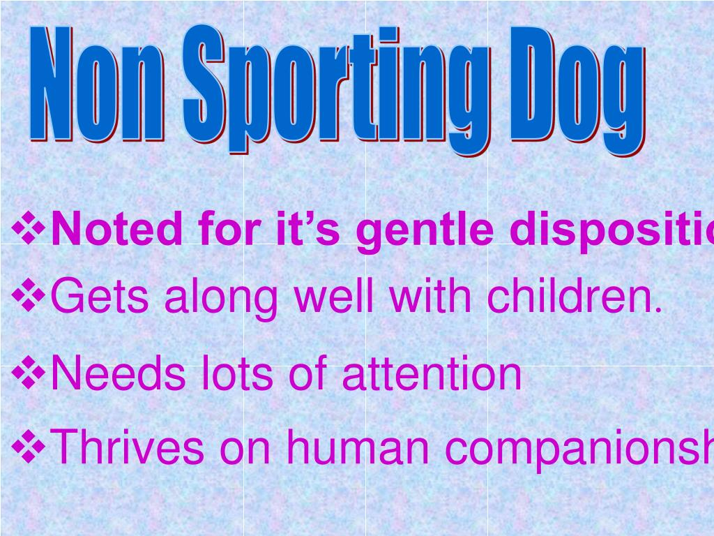 Non Sporting Dog