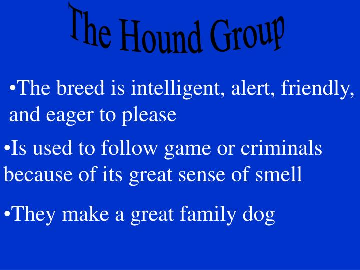 The Hound Group