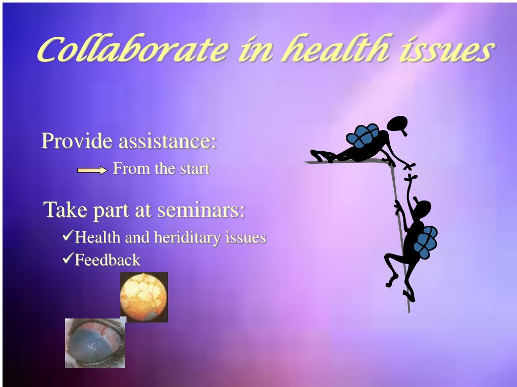 Collaborate in health issues