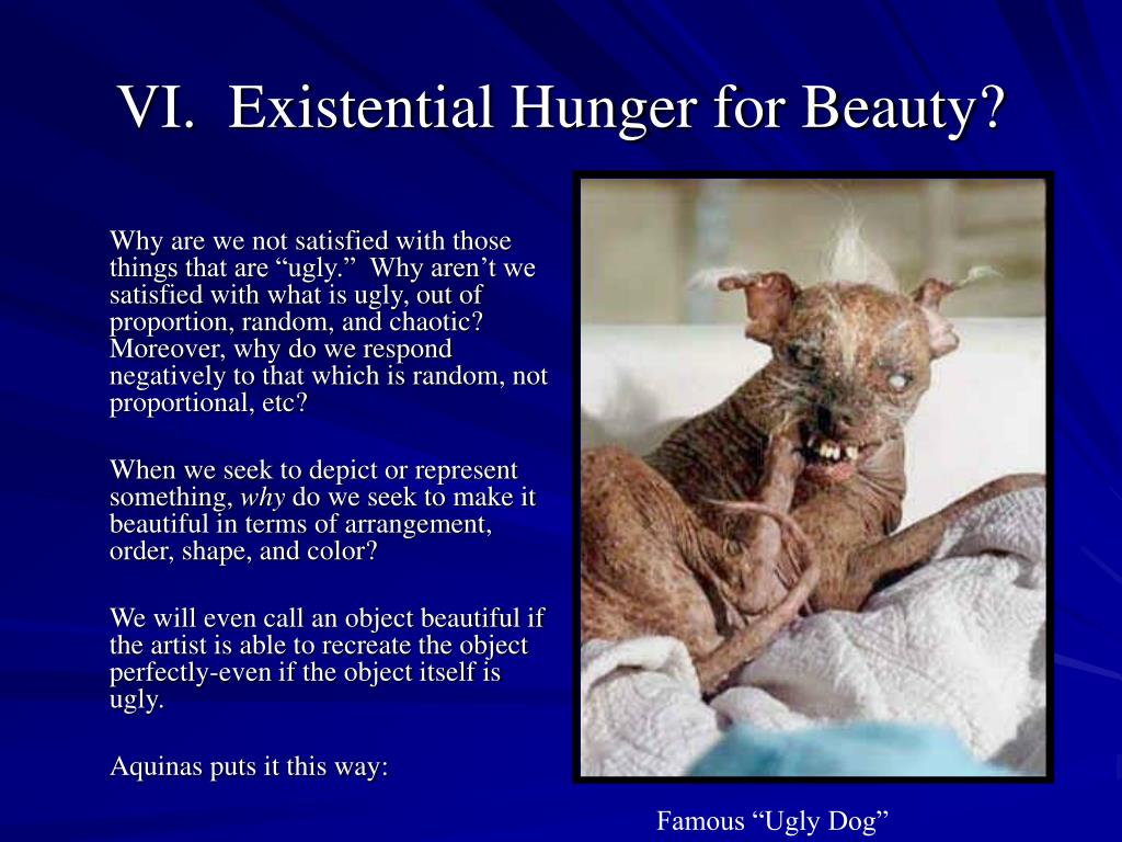 VI.  Existential Hunger for Beauty?