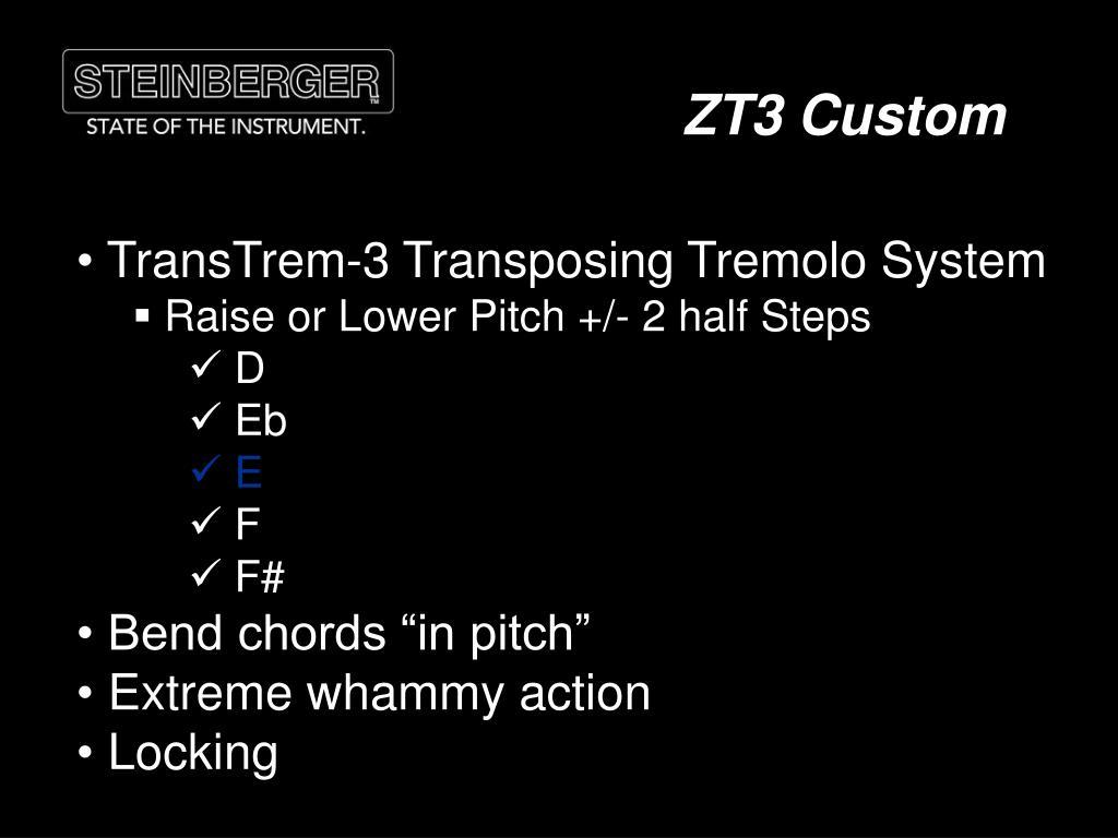 ZT3 Custom