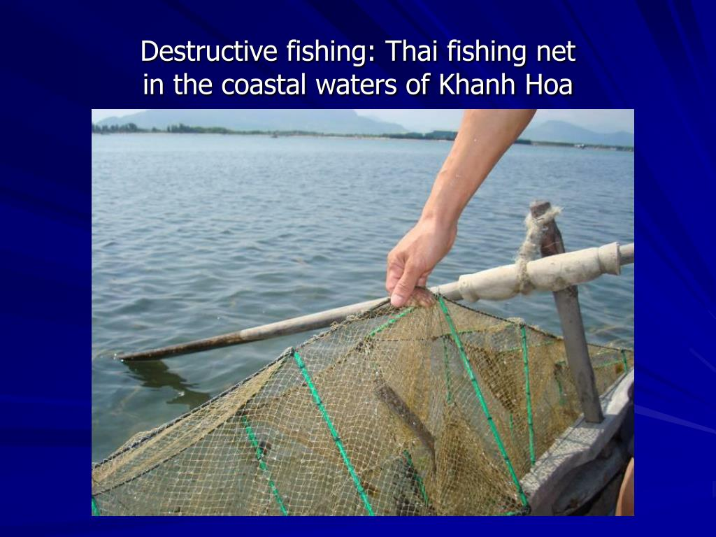 Destructive fishing: Thai fishing net