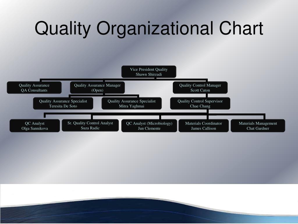 Quality Organizational Chart