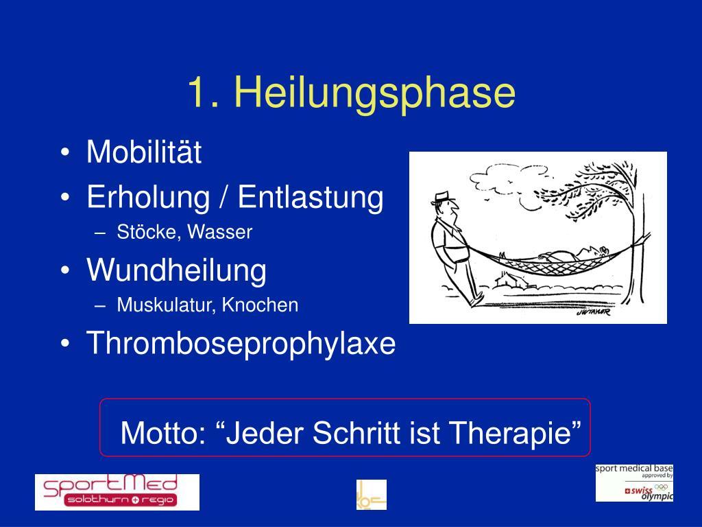 1. Heilungsphase