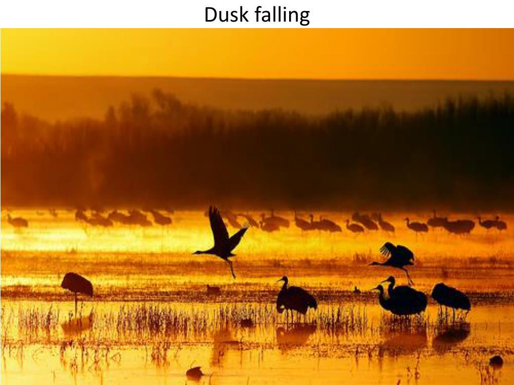 Dusk falling