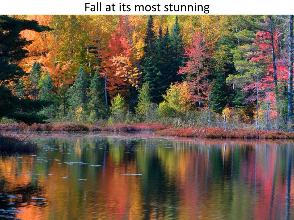 Fall at its most stunning