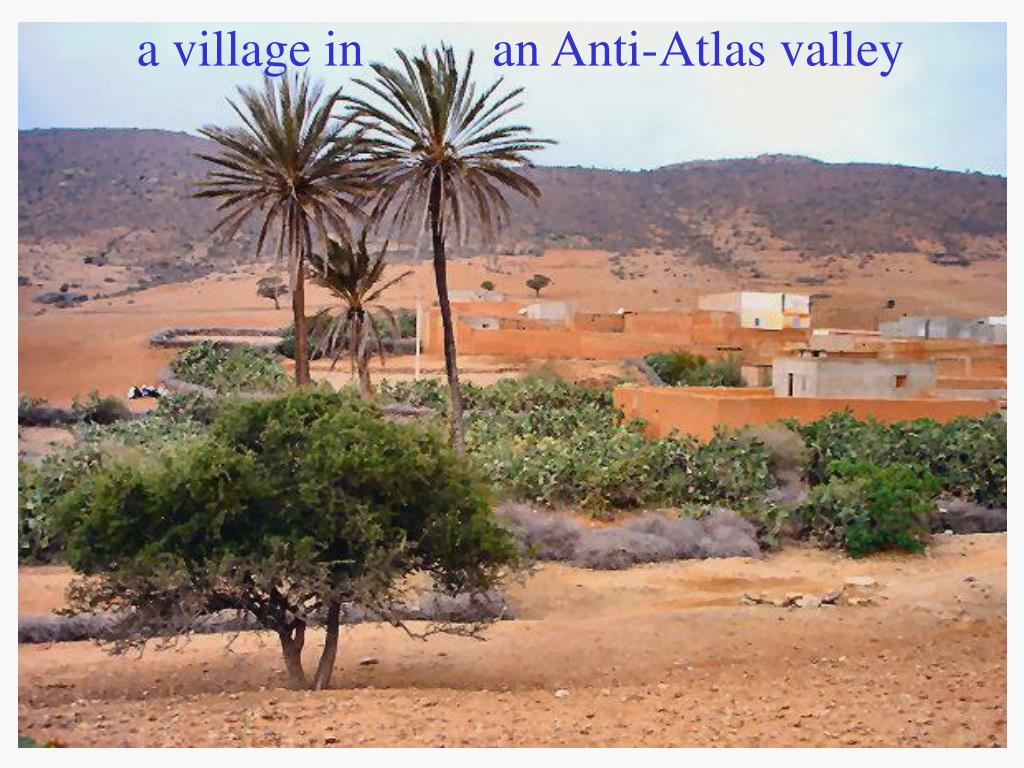 a village in          an Anti-Atlas valley