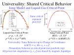 universality shared critical behavior