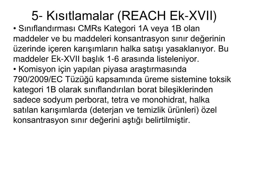 5- Kısıtlamalar (REACH Ek-XVII)