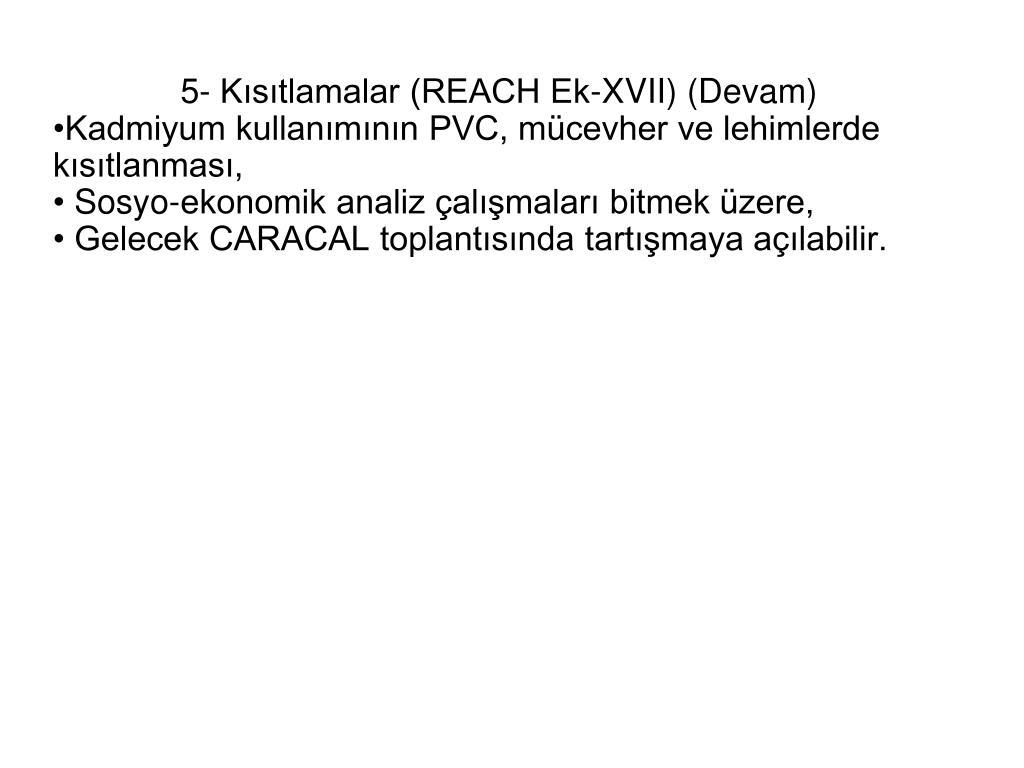 5- Kısıtlamalar (REACH Ek-XVII) (Devam)