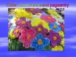 color exuberance and pageantry