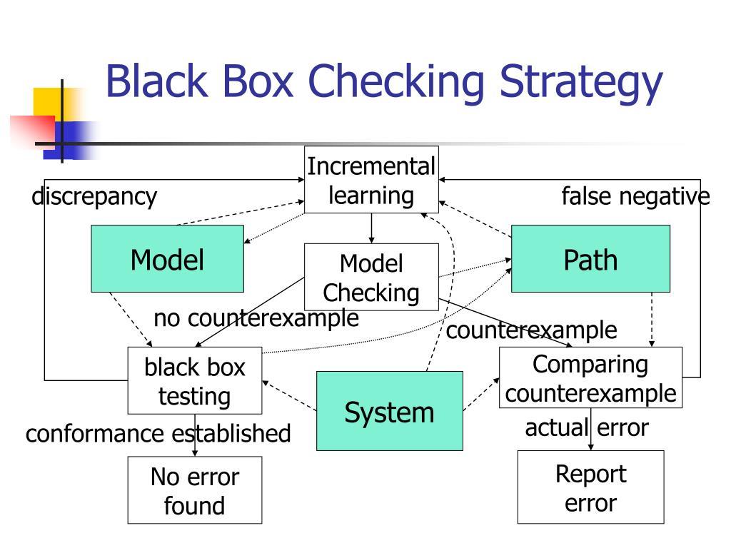 Black Box Checking Strategy