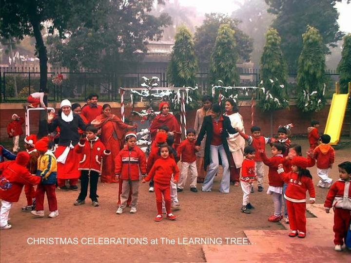 CHRISTMAS CELEBRATIONS at The LEARNING TREE…