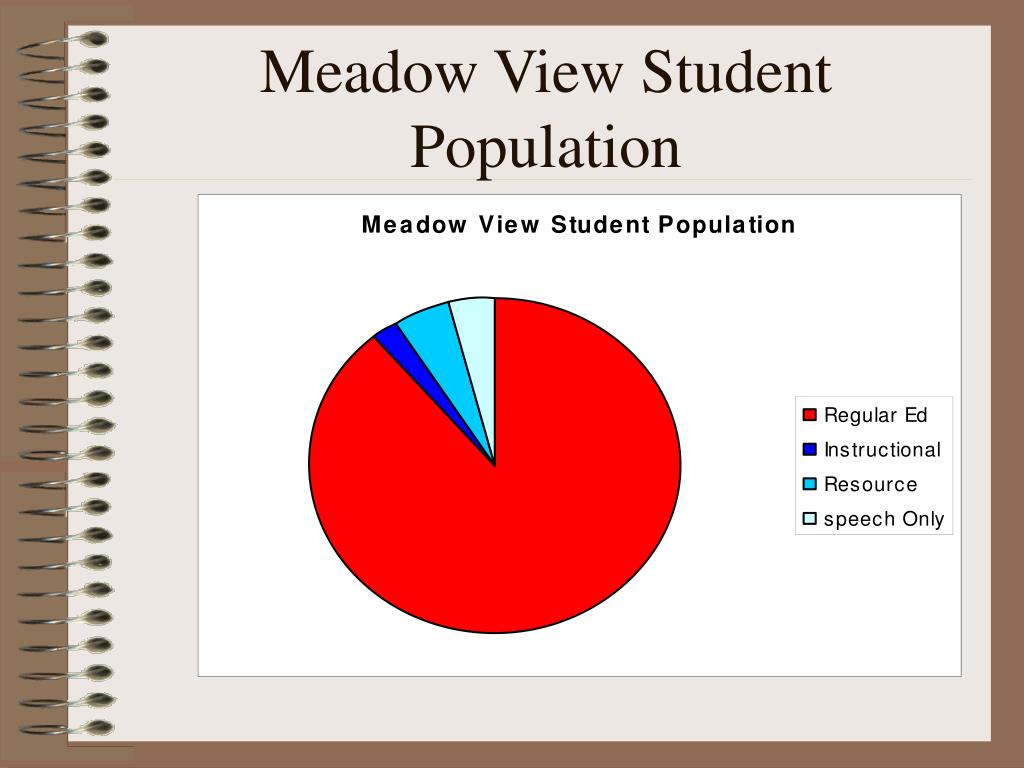 Meadow View Student Population