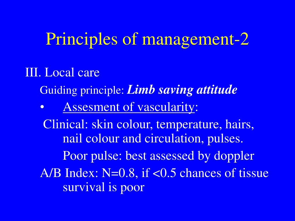 Principles of management-2