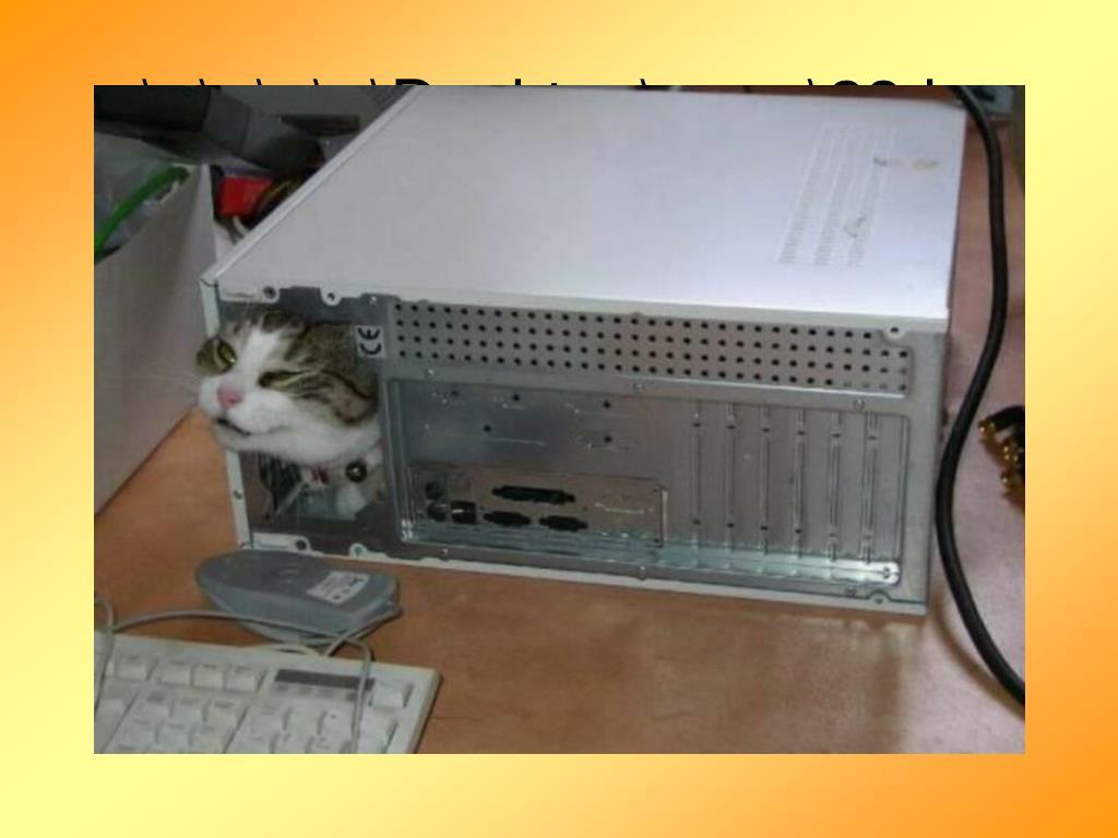 ..\..\..\..\..\Desktop\suga\23.jpg