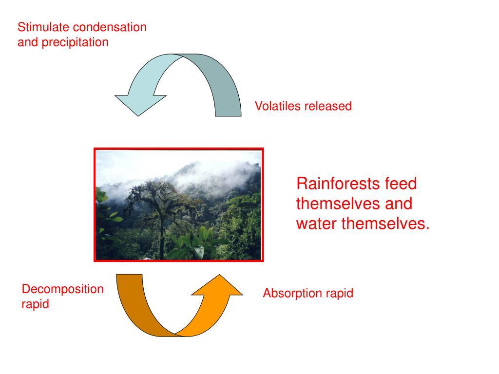 Stimulate condensation and precipitation