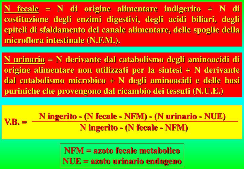 N ingerito - (N fecale - NFM) - (N urinario - NUE)
