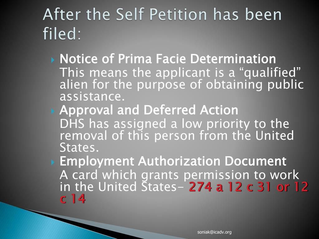 After the Self Petition has been filed: