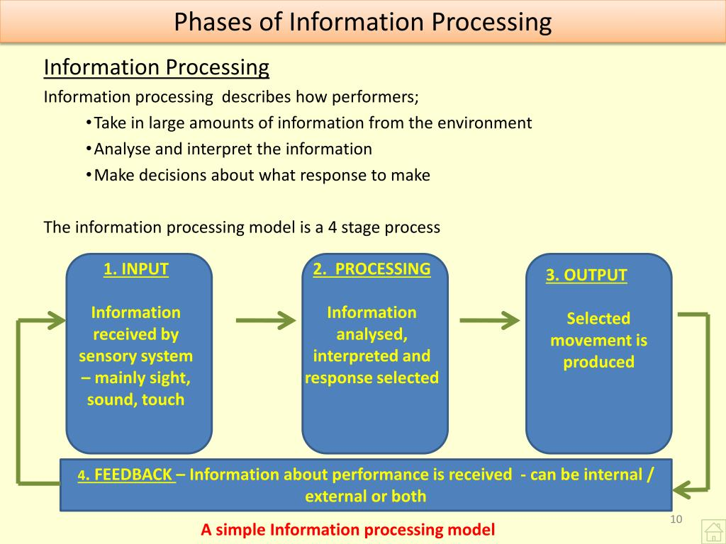 Phases of Information Processing