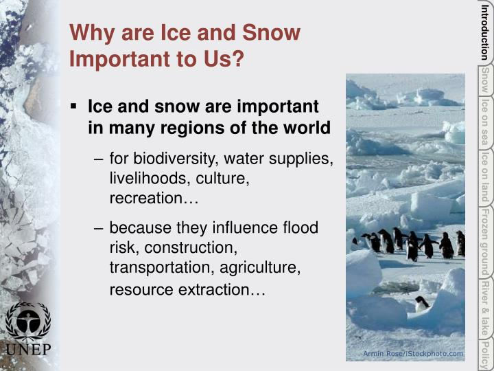 Why are ice and snow important to us