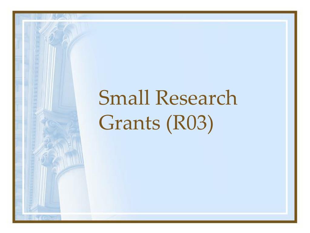 Small Research Grants (R03)
