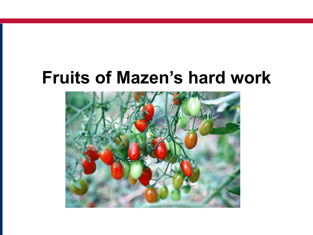 Fruits of Mazen's hard work