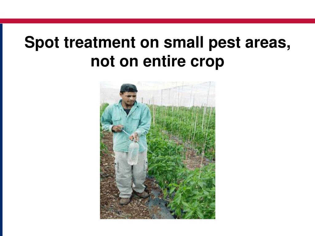 Spot treatment on small pest areas, not on entire crop