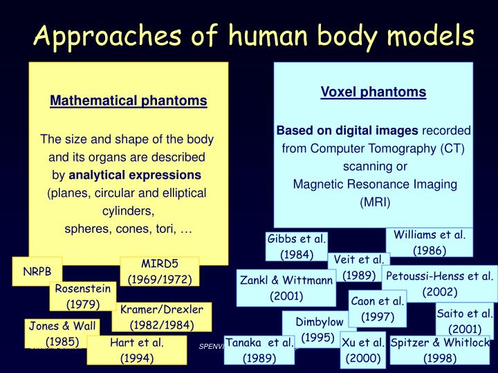 Approaches of human body models