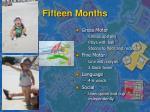 fifteen months