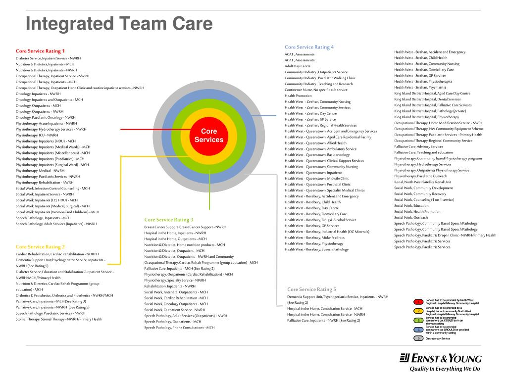 Integrated Team Care
