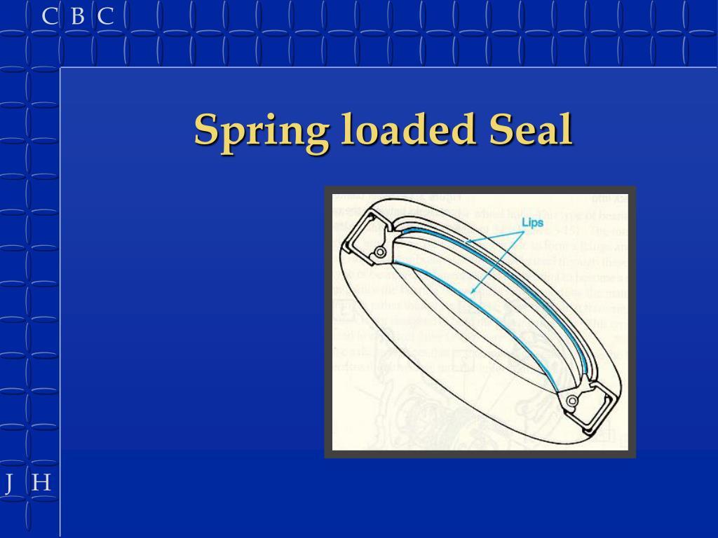 Spring loaded Seal