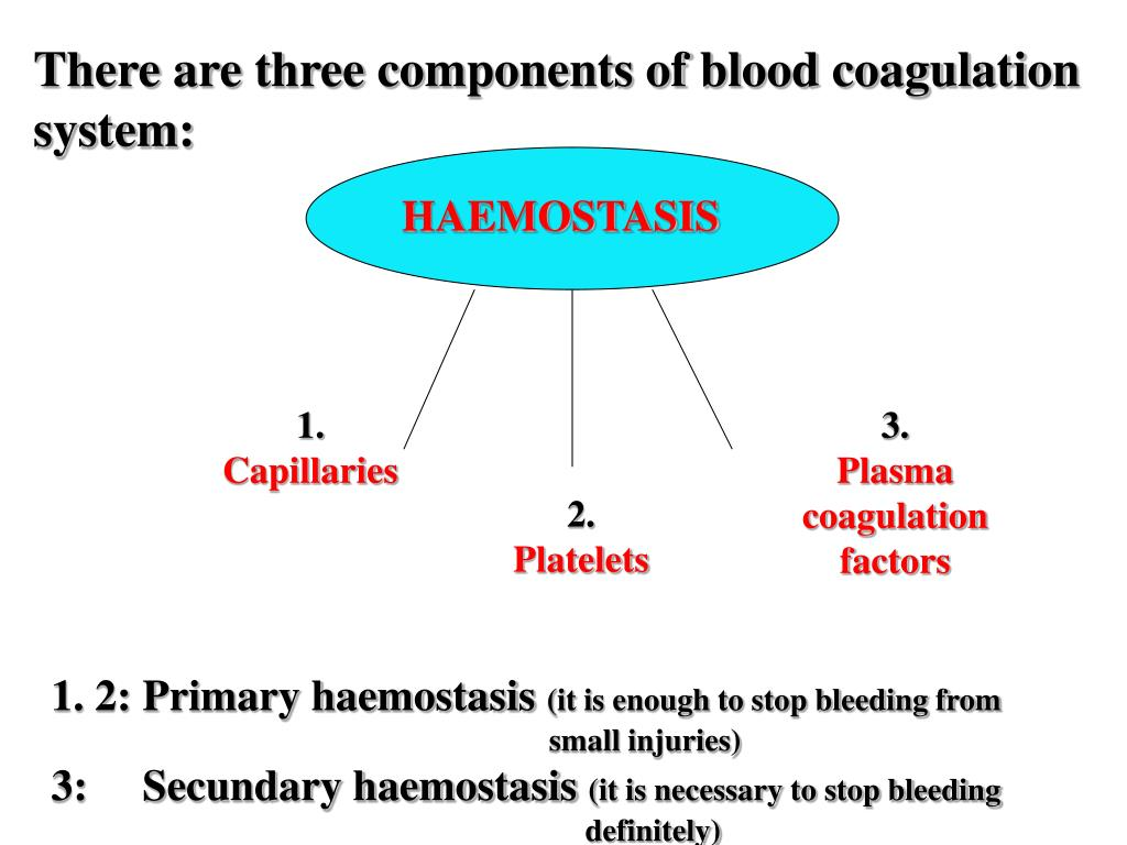 There are three components of blood coagulation system: