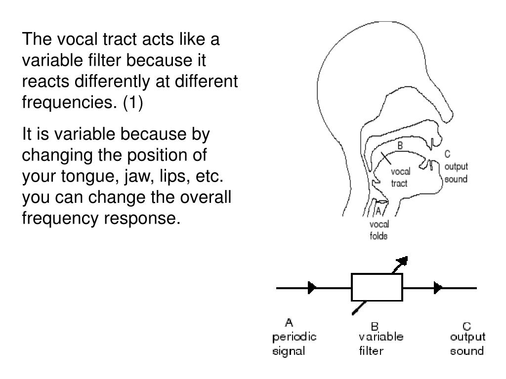 The vocal tract acts like a variable filter because it reacts differently at different frequencies. (1)