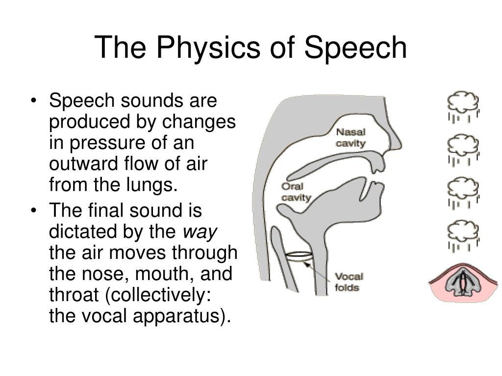 The Physics of Speech