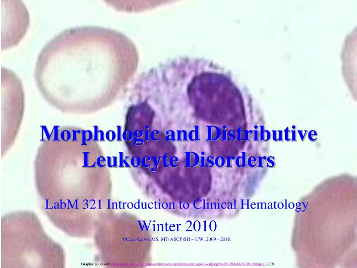 Morphologic and distributive leukocyte disorders